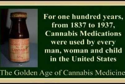 http://comingoutofthecannabiscloset.files.wordpress.com/2012/10/cannabis-medications.jpg
